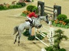 http://www.travelingshoe.com/photos/Show Jumping-0.jpg