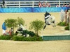 http://www.travelingshoe.com/photos/Show Jumping-13.jpg