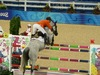 http://www.travelingshoe.com/photos/Show Jumping-23.jpg