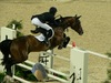 http://www.travelingshoe.com/photos/Show Jumping-24.jpg