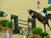 http://www.travelingshoe.com/photos/Show Jumping-3.jpg