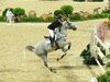 http://www.travelingshoe.com/photos/Show Jumping-32.jpg