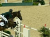 http://www.travelingshoe.com/photos/Show Jumping-36.jpg