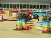 http://www.travelingshoe.com/photos/Show Jumping-37.jpg