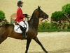 http://www.travelingshoe.com/photos/Show Jumping-38.jpg
