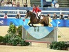 http://www.travelingshoe.com/photos/Show Jumping-39.jpg