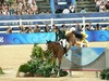 http://www.travelingshoe.com/photos/Show Jumping-4.jpg