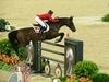 http://www.travelingshoe.com/photos/Show Jumping-6.jpg