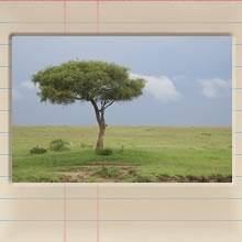 masai_mara_day_i_cover_image.jpg